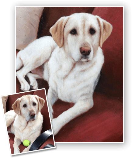 Turn pet picture into a painting